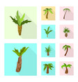 design nature and flora symbol vector image vector image