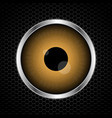 eye with abstract metal texture vector image vector image