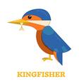 Kingfisher Bird Icon vector image