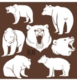 set wild bear silhouettes on background vector image vector image