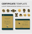 simple certificate design with badge vector image
