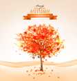 Autumn tree with orange leaves vector image