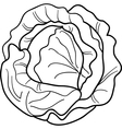 cabbage vegetable cartoon for coloring book vector image vector image