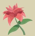 decorative flower delicate ornament nature vector image vector image