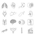 design body and human symbol collection vector image vector image