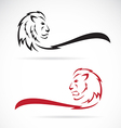 image of a lion vector image