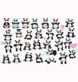 set cute pandas cartoon pandas vector image