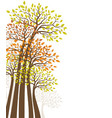 trees with colored leaves natural background vector image vector image