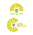box-brand-logo vector image