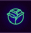 cabbage neon sign vector image