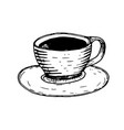 cup of tea hand drawn doodle vector image vector image