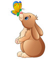 cute rabbit playing with butterfly isolated on a w vector image vector image