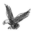 eagle on white background design element for vector image vector image