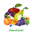 fresh juicy fruits and berries mix on white vector image vector image