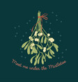 mistletoe greeting card on dark background vector image vector image