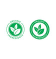 organic ingredients green leaf label icon vector image