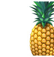 pineapple realistic summer exotic fruit closeup vector image