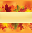 autumn leaves frame fall maple leaf floral vector image vector image