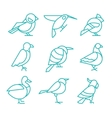 Bird Icons Thin Line Style vector image vector image