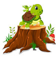 cartoon turtle and frog posing on tree stump vector image vector image