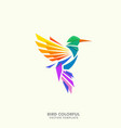 humming bird concept design template vector image vector image