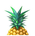 pineapple realistic summer exotic fruit closeup vector image vector image