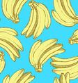 Sketch tasty bananas in vintage style vector image vector image