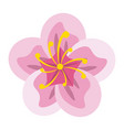 beautiful flower symbol vector image vector image