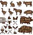 butcher tools Farm animals Fresh pork vector image vector image