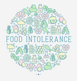 food intolerance concept in circle vector image vector image