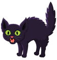 Frightened cartoon black cat vector image vector image