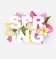 hello spring banner greetings design background vector image vector image