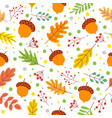 seamless autumn leaves pattern fall season colors vector image