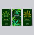 set cannabis sativa indica marijuana leaves drug vector image vector image