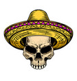 skull in sombrero isolated on white background vector image vector image