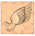 wing on the background of old paper design vector image