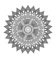 mandala floral decorative ethnic element vector image