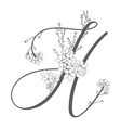hand drawn floral h monogram and logo vector image vector image