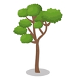 Tree forest nature icon vector image