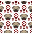 dog breed french bulldog adorable doggy face pet vector image