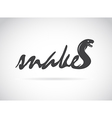 design snake is text vector image