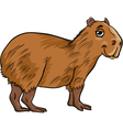 capybara animal cartoon vector image vector image