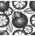 hand drawn sketch style mangosteen seamless vector image vector image