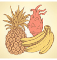 Sketch exotic fruits in vintage style vector image vector image