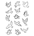 Outline graceful dove and pigeon birds vector image