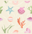 colorful seamless pattern with seashells starfish vector image