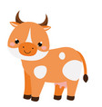 cute cow cartoon farm animal isolated on white vector image vector image