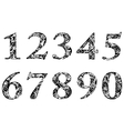 digits and numbers with floral elements vector image vector image