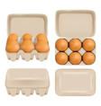 egg carton consumer pack set vector image