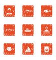 fish spectacle icons set grunge style vector image